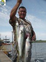 рыболовная база на волге промысловое
