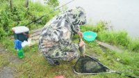 клев рыбы змеиногорск